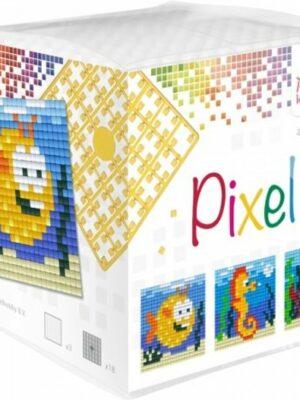 Pixelkubus Zeedieren