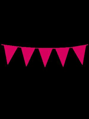 Mini vlaggenlijn baby-roze
