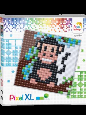 Pixel XL set Aap